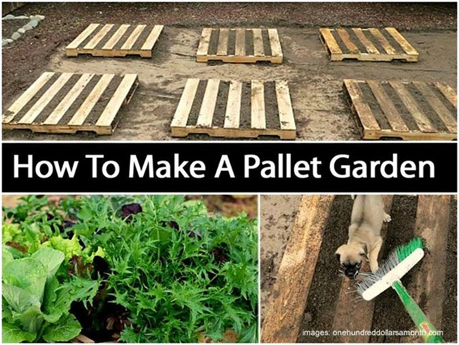 pallet gardening ideas diyhowto create a pallet garden video