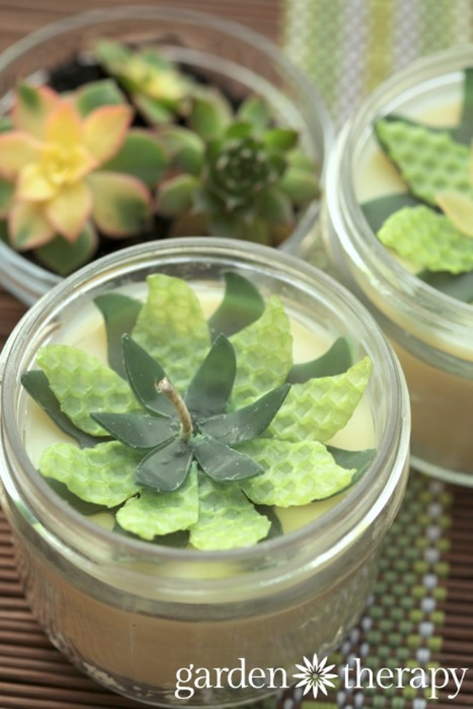 DIYHowto 20 DIY Candle Projects That Are Beautiful And Decorative For Home-DIY Beeswax Succulent Flower Mason Jar Candle