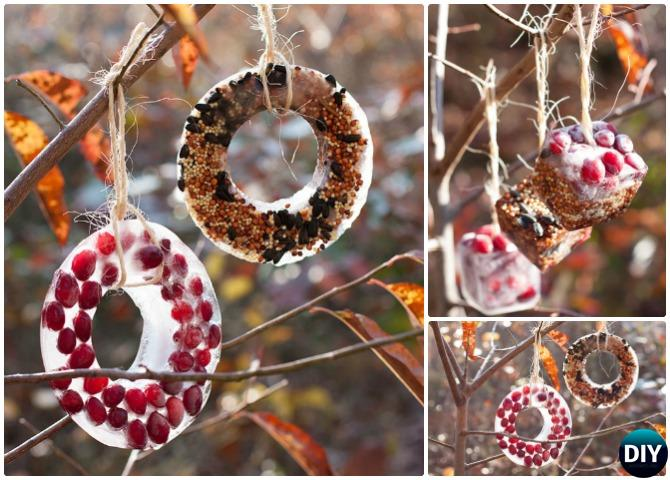 DIY Birdseed Ice Ornaments - 20 DIY Bird Feeder Projects to Bring Life in Your Garden