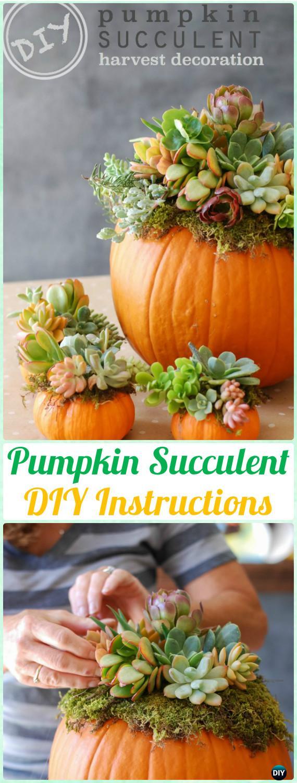 DIY Pumpkin Succulent Centerpiece Instructions - DIY Indoor Succulent Garden Ideas Projects
