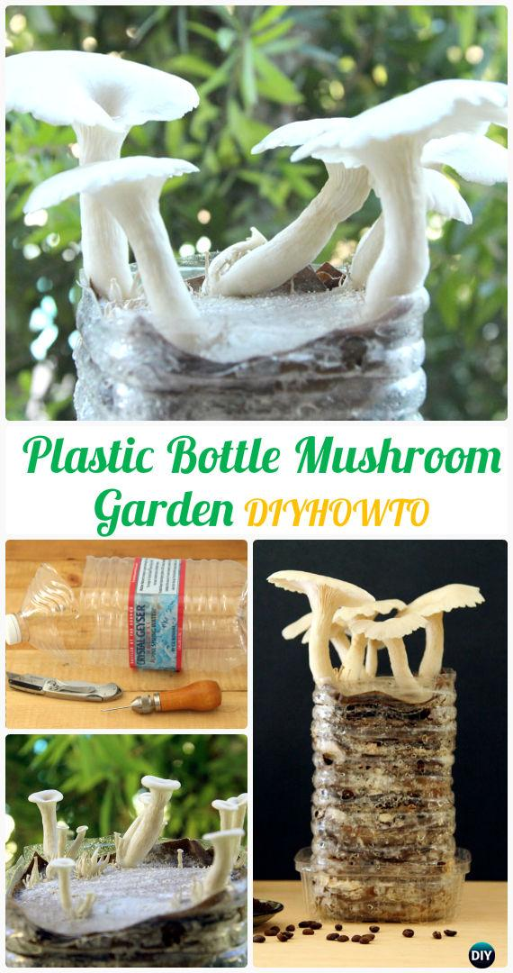DIY Plastic Bottle Mushroom Gardening Instructions - DIY Plastic Bottle Garden Projects & Ideas