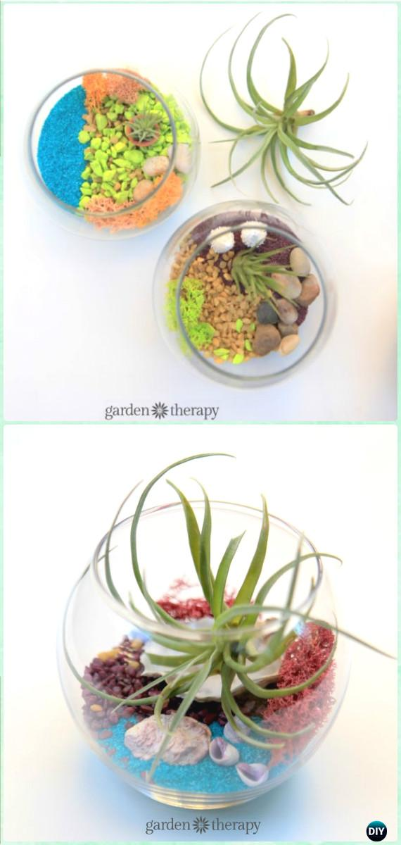 DIY Air Plant Terrarium Instruction - DIY Sand Art Terririum Ideas Projects & Tutorials