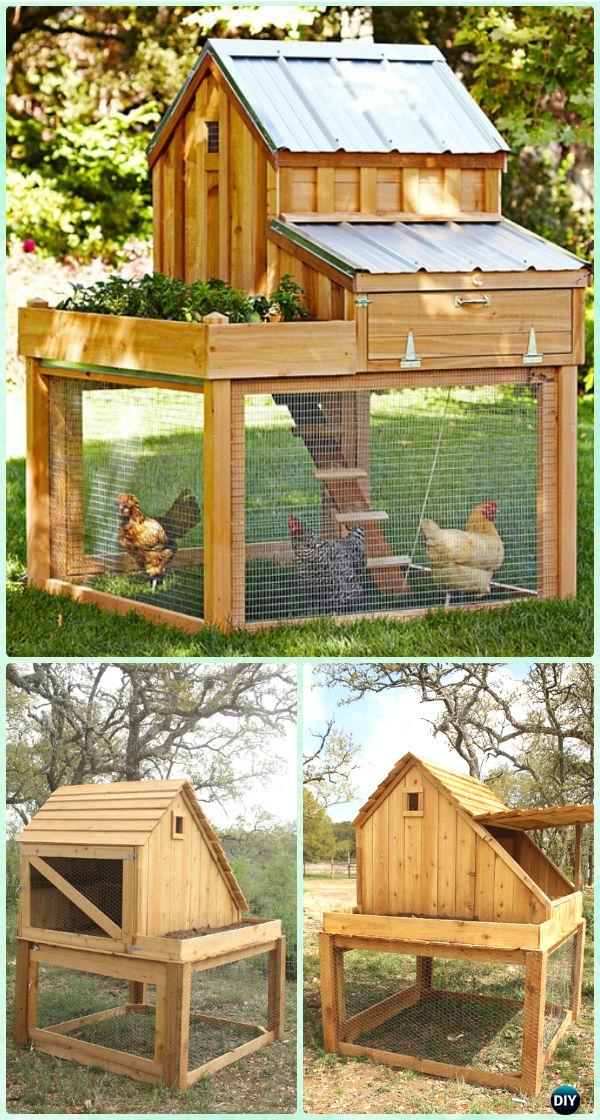 DIY Saltbox Chicken Coop Free Plan & Instructions - DIY Wood Chicken Coop Free Plans