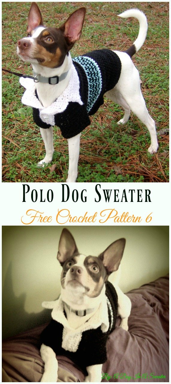 Polo Sweater Dog Coat Crochet Free Pattern - #Dog; #Sweater; #Crochet; Free Patterns