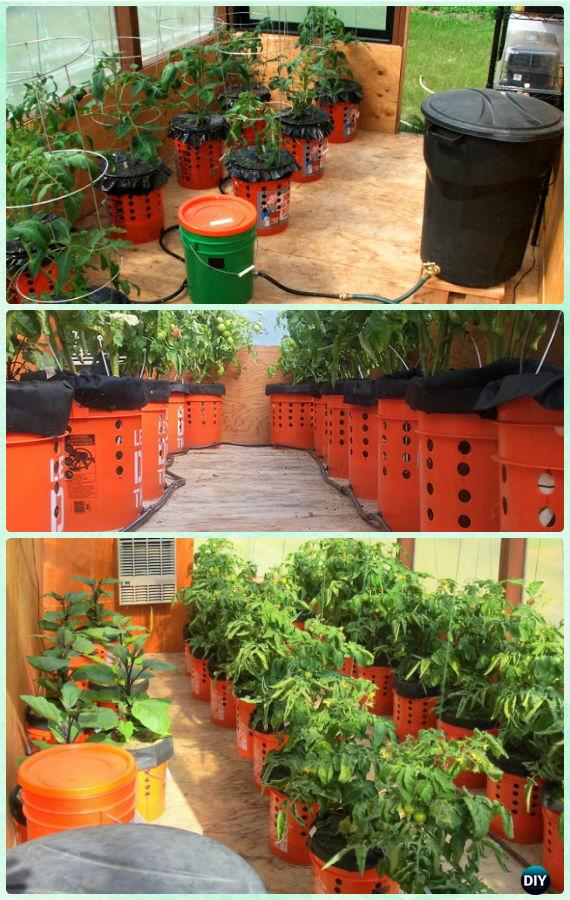 DIY Alaska Self Watering Grow Bucket Instructions - Gardening Tips to Grow Tomatoes In Containers