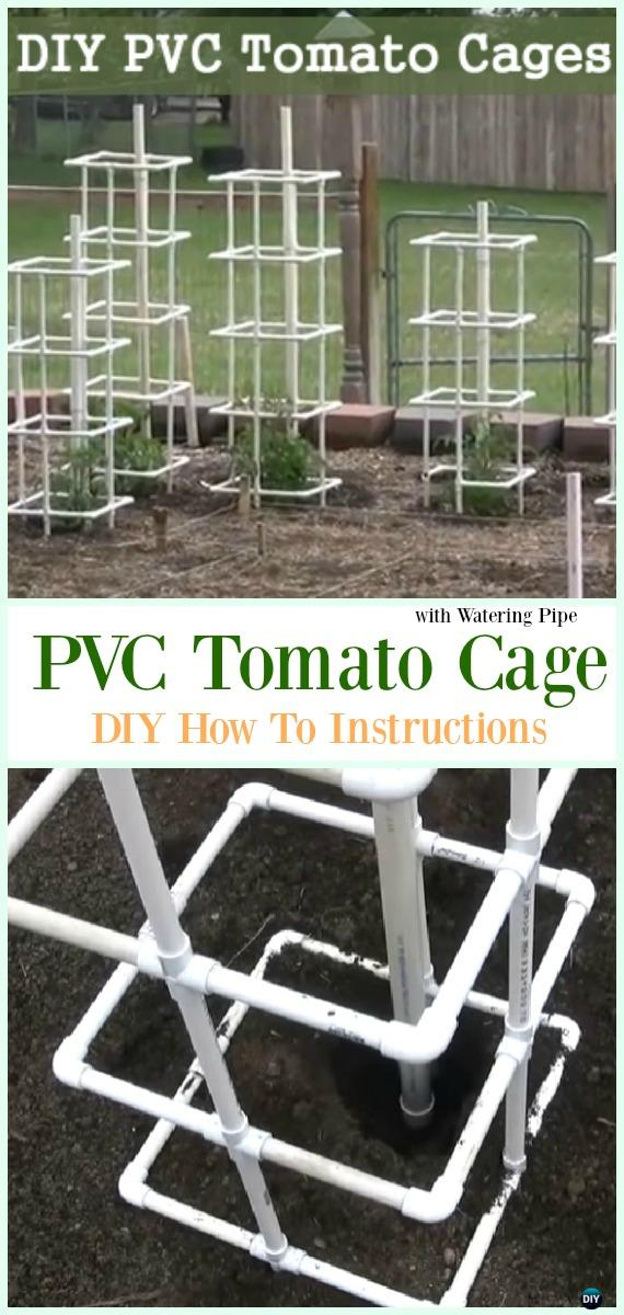 Single PVC Tomato Cage with Watering Pipe DIY Instructions - Low Budget DIY PVC Garden Projects