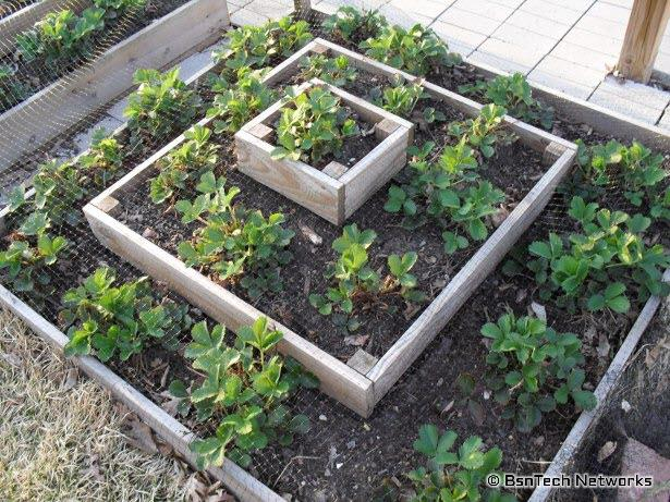 Clay Pot Tower Projects For Garden With Gorgeous Step By Instructions Check Out The Gallery More Pyramid Planter And Raised Beds Ideas