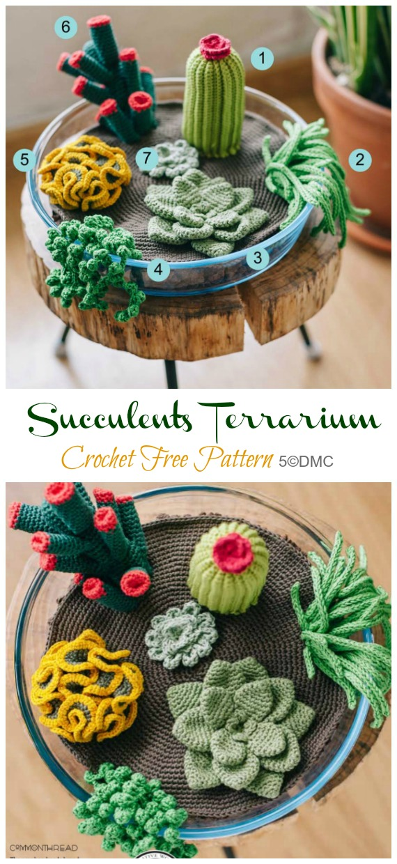 Crochet Succulents Terrarium Amigurumi  Free Pattern- Fun House Plant #Crochet; Free Patterns
