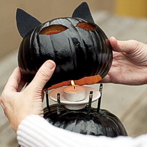DIY Black Cat O'Lanterns Tutorial - DIY Halloween Light Projects Instructions