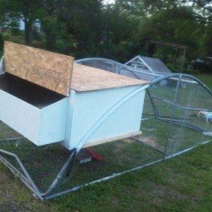 DIY Trampoline Chicken Coop [Picture Instructions]