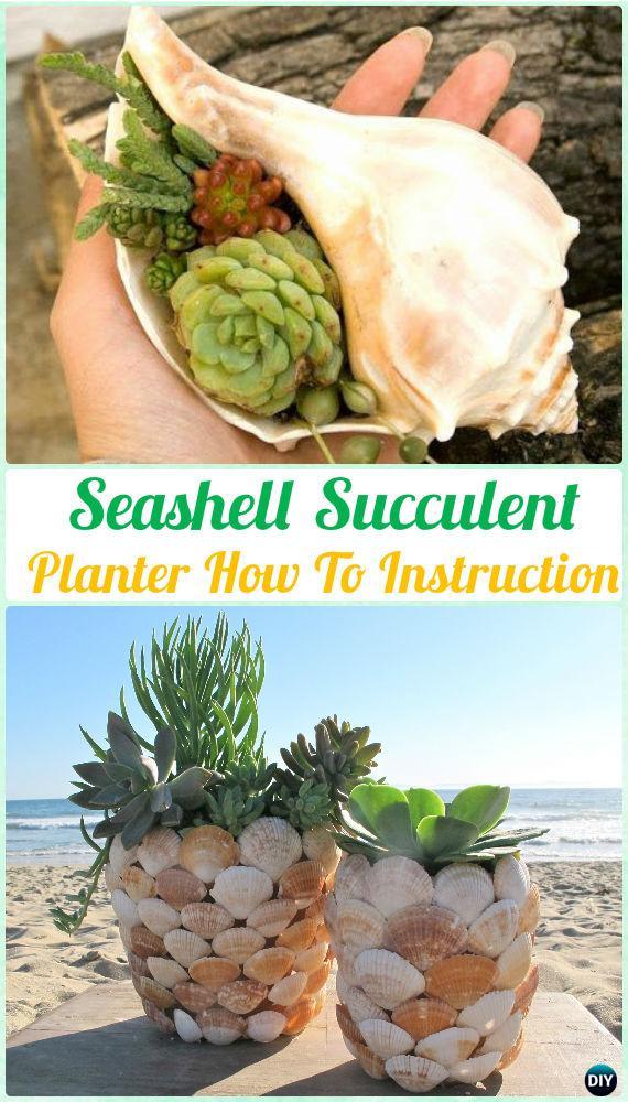 Diy Seashell Succulent Planter Instruction Diy Indoor Succulent