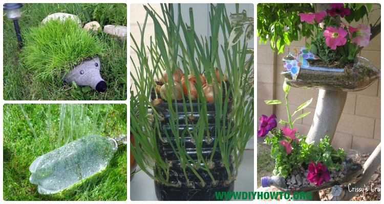 Diy Plastic Bottle Garden Projects Ideas Picture Instructions