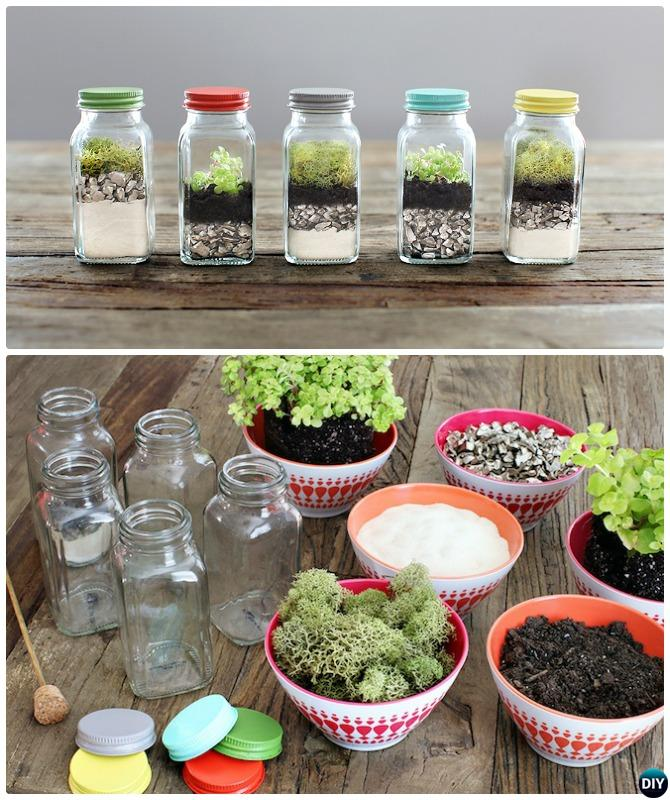 Spice Jar Terrarium Diy Mini Fairy Terrarium Garden Ideas Diy How To